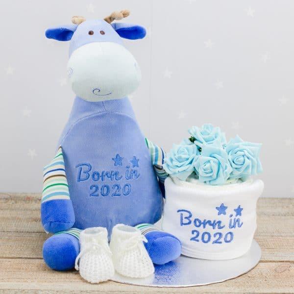 Boys Baby Shower Gift Set